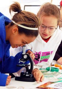 Investigate with a Microscope!