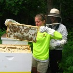 Waynedale Apiary Has Three-fold Mission: News Sentinel