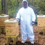 Eagle Scout Project To Save The Bees: The Waynedale News